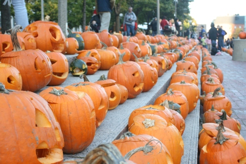 Boston's Pumpkin Fest